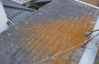 屋根 施工前状況