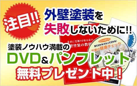 DVDパンフレット無料プレゼント中!